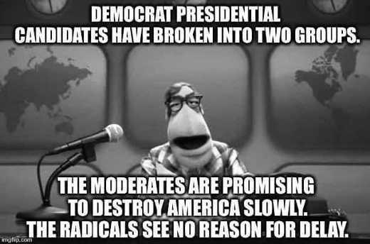 democrat presidential candidates in 2 groups moderates slowing destroying america those who dont want to delay jpg