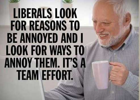 liberals look for reason to be annoyed and i look for reasons to annoy them jpg
