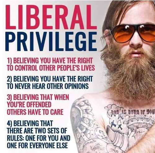 liberal privilege believing control other peoples lives rules dont apply to you offended never hear other opinions jpg