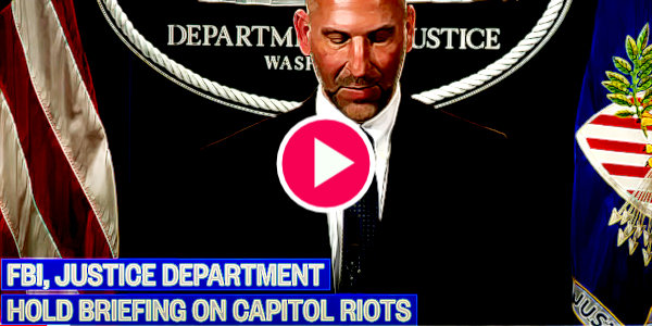 FBI creates sedition and conspiracy task force – warns hundreds more will be charged as they hunt MAGA 'rioters'…